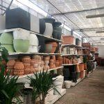 Vasto assortimento di vasi in plastica, vetroresina, terracotta.