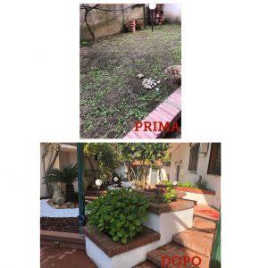 Manutenzione area verde: Prima/dopo